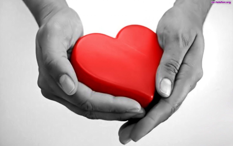 Znalezione obrazy dla zapytania pomoc dla ludzi serca
